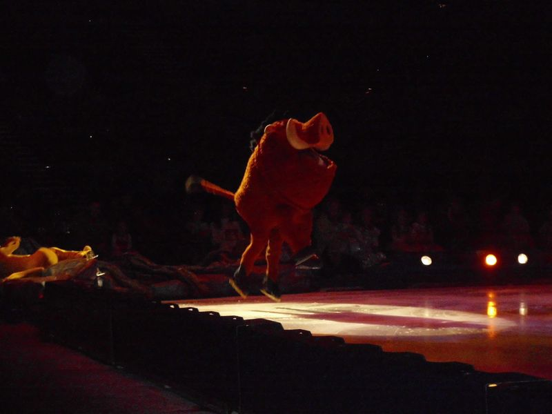 Disney On Ice 013