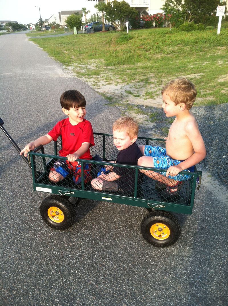 Cousins in a wagon